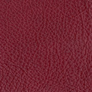 /common/images/fabrics/large/CETUS!BORDO.jpg