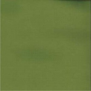 /common/images/fabrics/large/CLEARWATER!GREEN 12195.jpg
