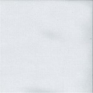 /common/images/fabrics/large/CLEARWATER!WHITE 11195.jpg