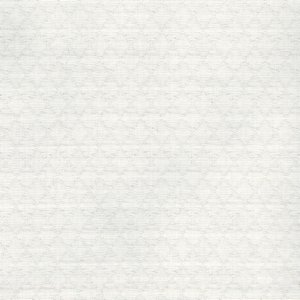 /common/images/fabrics/large/FIGARO!WHITE 001.jpg