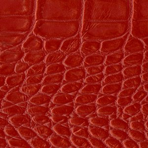 /common/images/fabrics/large/LUXOR!ROSSO.jpg