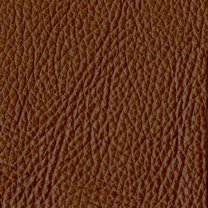 /common/images/fabrics/large/MOORE!CHESTNUT 1832.jpg