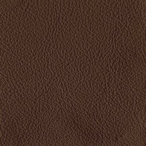/common/images/fabrics/large/STRAUSS!MOCHA 3302.jpg