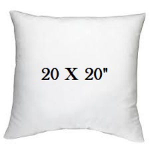 /common/images/fabrics/large/20X20 PILLOW!INSERT 20X20.jpg