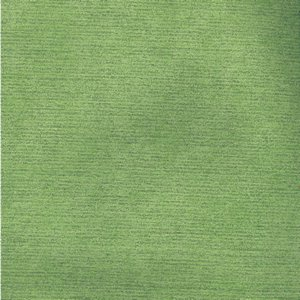 /common/images/fabrics/large/COLONY!LIME 135.jpg