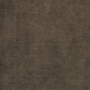 /common/images/fabrics/large/COLONY!TAUPE 113.jpg