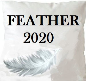 /common/images/fabrics/large/FEATHER 2020!INSERT 20X20.jpg